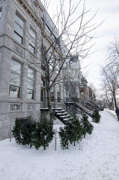 Montréal 11